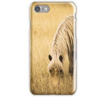 Pony Grazing in the Evening iPhone Case/Skin