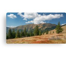 Carpathian Mountains in sunny day Canvas Print