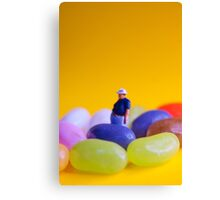 Jelly Belly! Canvas Print