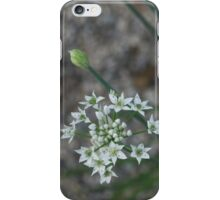 Calming Grays and White Stars iPhone Case/Skin