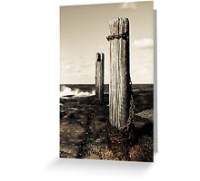 Wooden pole by the sea Greeting Card