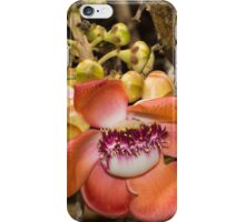 Cannonball Tree Tropical Flower iPhone Case/Skin