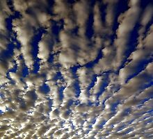 """"""" Early morning Clouds """" by helmutk"""