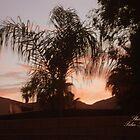 SUNSET IN THE DESERT by Sherri     Nicholas