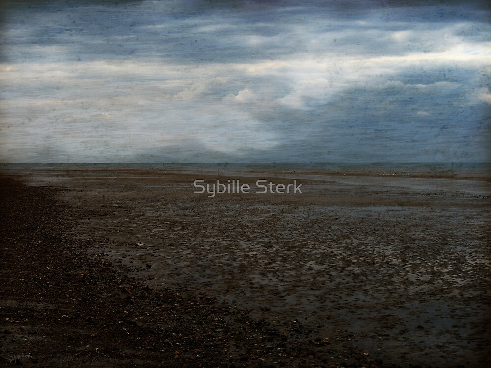 The Wash I by Sybille Sterk