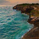 Early Morning Indian Ocean Blues by Warren. A. Williams