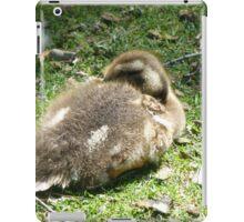 Sleeping Duckling 2 iPad Case/Skin