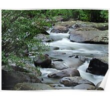North Inlet Cascades Poster