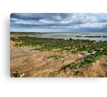 The Seashore Canvas Print