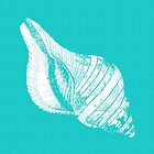 Aqua Blue with White Shell by Greenbaby