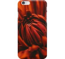 This is Red iPhone Case/Skin