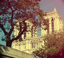 Notre Dame by Claire Elford