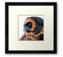 Brown Wood Owl Portrait II Framed Print