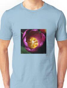 A Heart Of Gold Unisex T-Shirt
