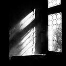 The Window by rosedew