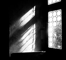 The Window by rosedew