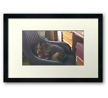 Office Kitty Framed Print
