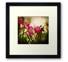 Textured Bokeh Framed Print