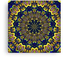 Psychedelic Journey Through Time and Space Canvas Print