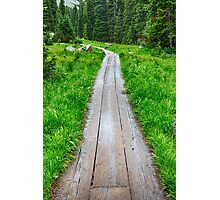 Wooden Forest Path Photographic Print