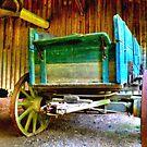 Old Wagon by Richard Skoropat