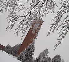 Winter Campanile by WomArtists
