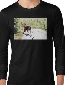 Bull Moose Munching in The Road Long Sleeve T-Shirt