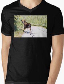 Bull Moose Munching in The Road Mens V-Neck T-Shirt