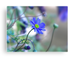 ~ Misty Blue Morn ~ Canvas Print