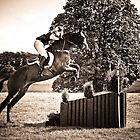 Show Jumping by DeePhoto