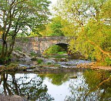 Skelwith Bridge Nr Ambleside  by plumart