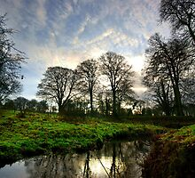 Morning Reflection - Erddig by Phil Connor