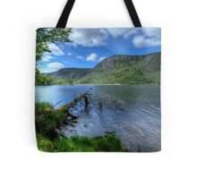 The Fallen Tree Tote Bag