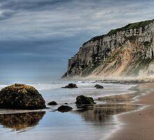 Bempton Cliffs by szysza