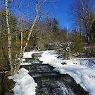 Spring Thaw by RLHall