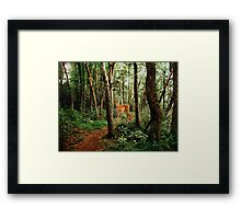 The Little Path Framed Print