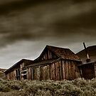 shelter from the storm by Phillip M. Burrow