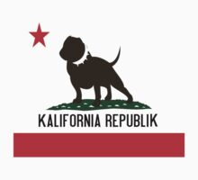 Kalifornia Republik Flag by illuzive