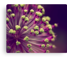 Purple and Lime Green Canvas Print