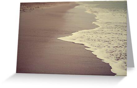 Hello Ocean! by Stephanie Newton