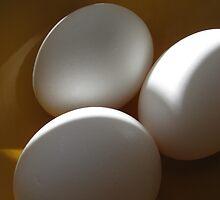 Eggs by LindieRacz