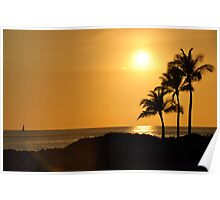 Warm Afternoon and Palm Trees Poster