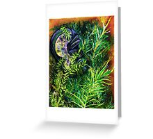 The Ancients Greeting Card