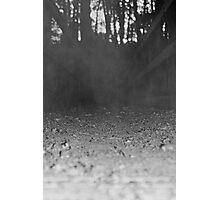 Miasma Photographic Print