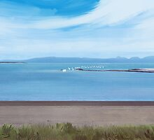 Oppies At Pwllheli by danbullockart