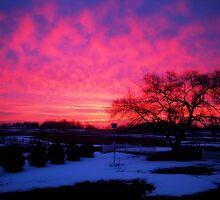 Amazing Sunrise by BunBun