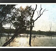 afternoon reflection 1 - Cooktown & further Nth by Peter Martin