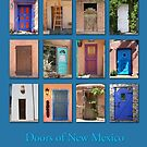 Doors of New Mexico by Heidi Hermes