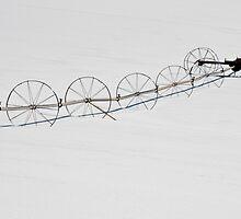 Winter Irrigator by phil decocco