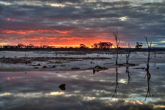 Saline Sunset by Melissa Drummond